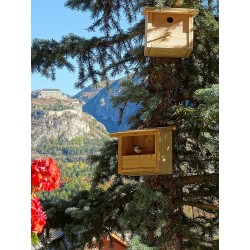 Bird feeder / nest box in larch wood JARDIFIX